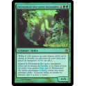 MTG Magic ♦ Born of the Gods ♦ Dévastateur des Terres Nessiannes VF FOIL Prerelease NM