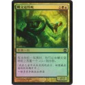 MTG Magic ♦ Alara Reborn ♦ Lorescale Coatl Chinese FOIL NM