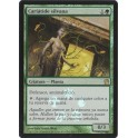 MTG Magic ♦ Theros ♦ Sylvan Caryatid Spanish FOIL Promo Box NM