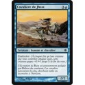 MTG Magic ♦ Shards of Alara ♦ Cavalière de Jhess VF NM