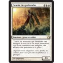 MTG Magic ♦ Return to Ravnica ♦ Géante des Palissades VF NM