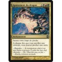 MTG Magic ♦ Alara Reborn ♦ Apaisement du Dragon VF NM
