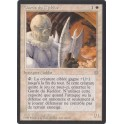 MTG Magic ♦ Ice Age ♦ Garde du Kjeldor VF NM