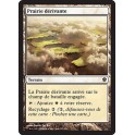 MTG Magic ♦ Commander 2013 ♦ Prairie Dérivante VF Mint