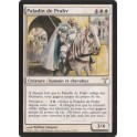 MTG Magic ♦ Dissension ♦ Paladin de Prahv VF NM
